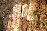 阎家岗旧石器时代遗址