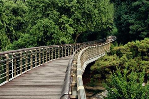 泉城公园的图片