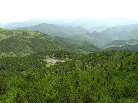 白露山旅游景点图片