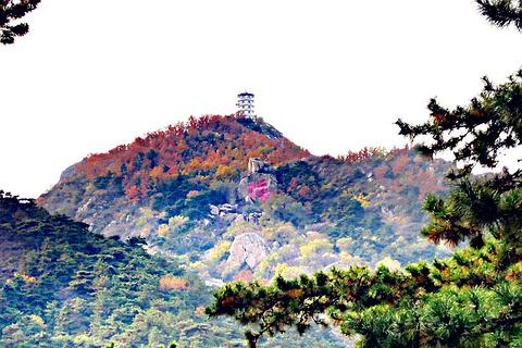 白龙潭皇家森林公园的图片