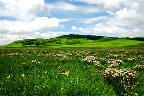 红松洼自然保护区