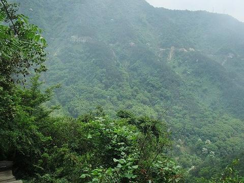 花脖山森林公园花脖山旅游景点图片