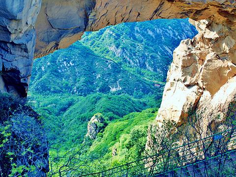 青菁顶自然风景区旅游景点图片