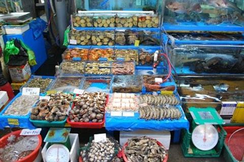 嵊泗县菜园镇水产品市场