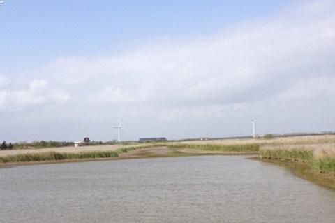 东滩湿地公园