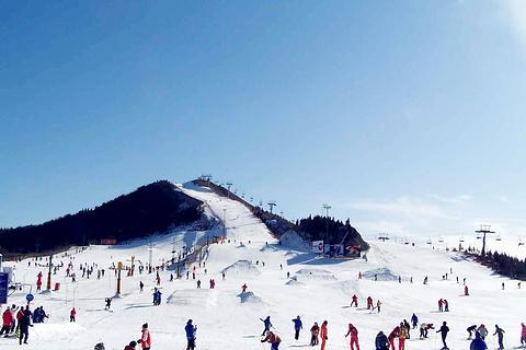 南山滑雪场的图片