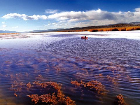 可鲁克湖景区旅游景点图片