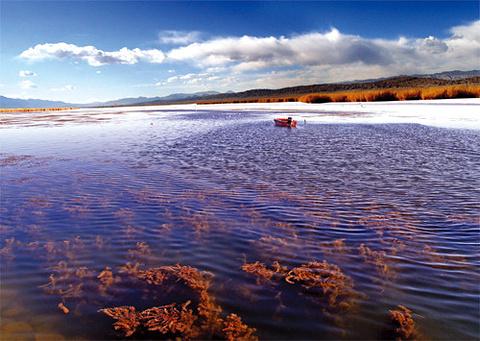 可鲁克湖景区的图片