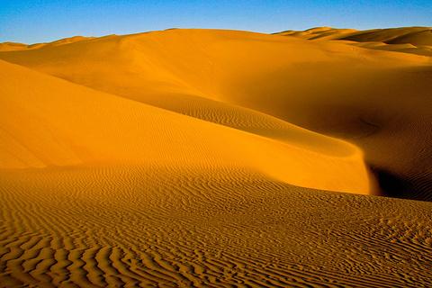 塔克拉玛干沙漠(巴音郭楞)的图片
