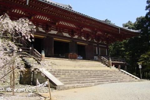 神护寺的图片