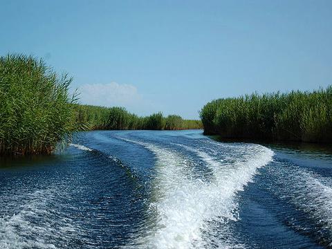 孔雀河旅游景点图片
