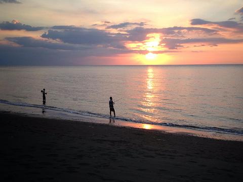 罗威那海滩的图片