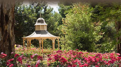 林道山玫瑰园