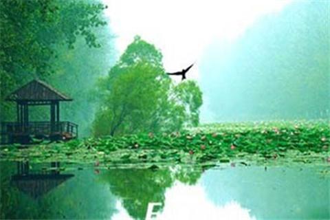 星湖湿地公园