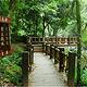 蓬莱溪自然生态园区