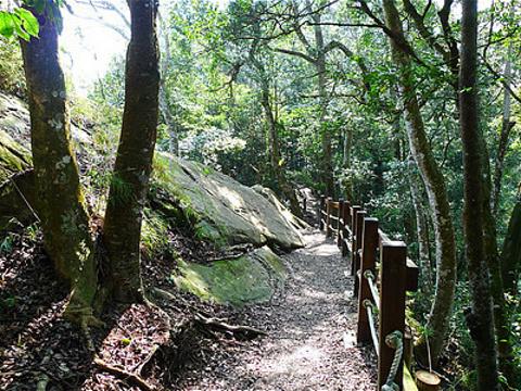 马那邦山登山步道旅游景点图片