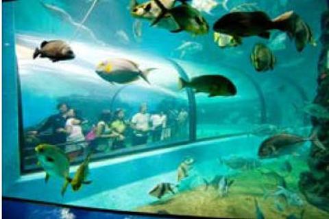 普吉水族馆