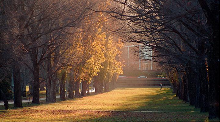 澳大利亚国立大学旅游图片