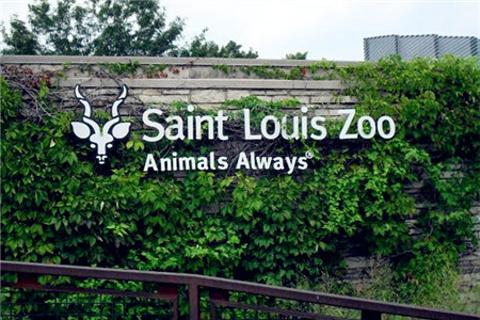 圣路易斯旅游图片