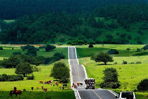 眉山旅游图片