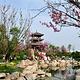 凤凰湖湿地公园
