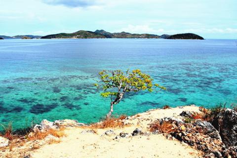 马卡布亚岛