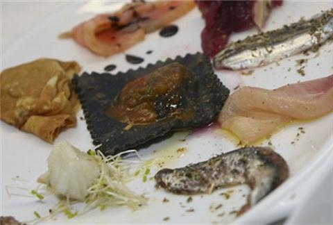 鳀鱼 Anchovy