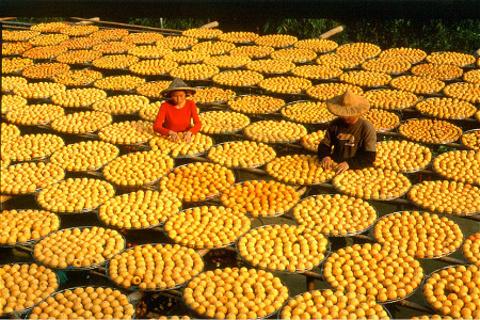 新竹旅游图片