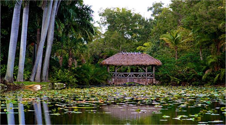Bonnet House Museum & Gardens旅游图片