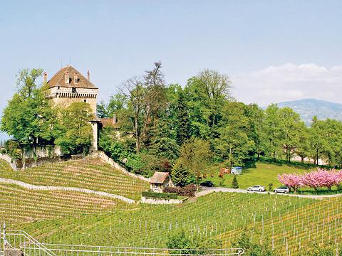 夏特拉尔城堡旅游景点图片