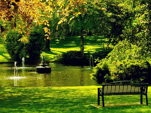 比肯丘公园旅游景点图片