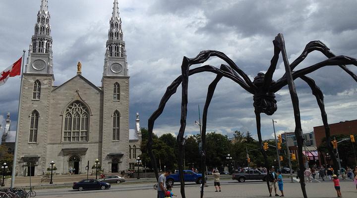 加拿大国家美术馆旅游图片