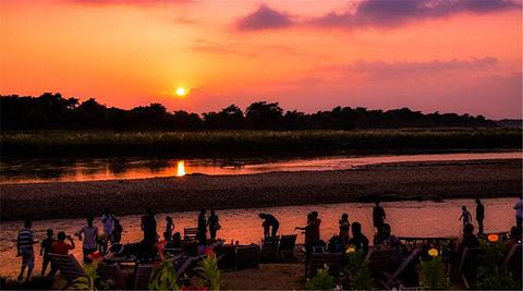 奇特旺国家公园旅游图片