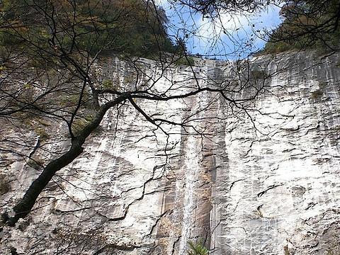 朱雀国家森林公园旅游景点图片