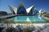 瓦伦西亚海洋水族馆