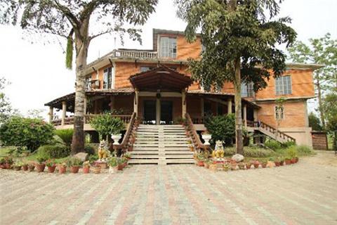 丛林景观餐厅