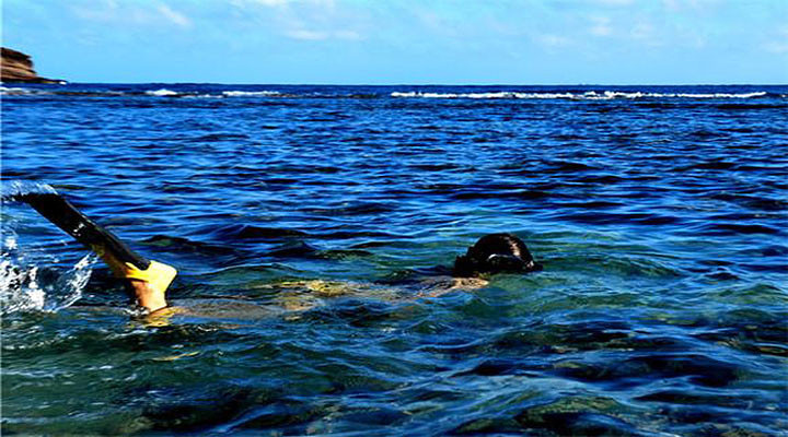 恐龙湾自然保护区旅游图片