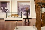 维多利亚女王博物馆和美术馆