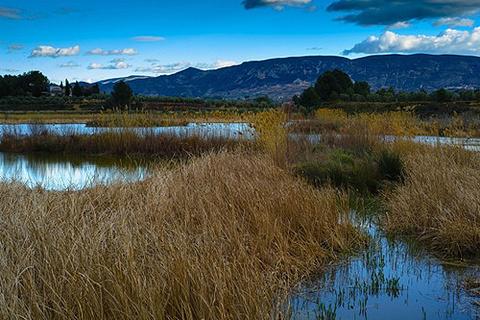 阿尔武费拉自然公园的图片