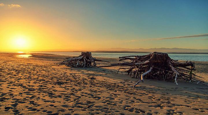 Tahunanui Beach旅游图片