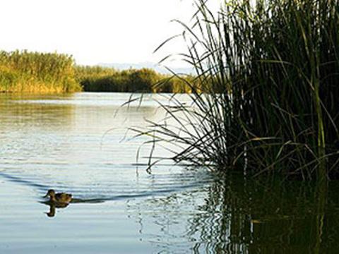 阿尔武费拉自然公园旅游景点图片
