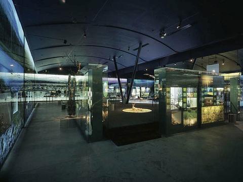 萨米博物馆旅游景点图片
