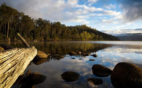 摇篮山圣克莱尔湖国家公园旅游图片
