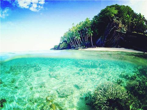 维提岛旅游景点图片