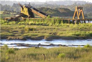 泰玛岛湿地