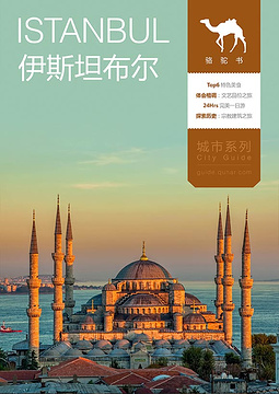 伊斯坦布尔骆驼书