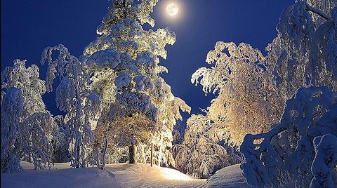 月光下的滑雪小道