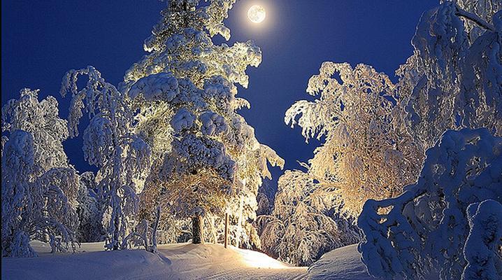 月光下的滑雪小道旅游图片