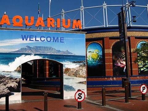 两大洋水族馆旅游景点图片