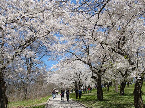 高地公园旅游景点图片